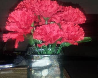Red Carnation Mothers Day