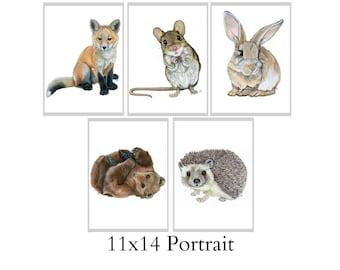 Set Of Five 11x14 Forest Animal Nursery Fine Art Prints - Automatic FREE Shipping - SKU110