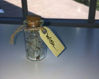 Wish bottle charm