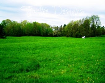 """WIDE OPEN SPACES Photograph, 8""""x10"""""""