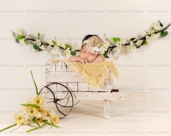 Newborn Photography Easter/Spring Digital Backdrop Prop