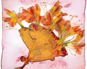Grape Leaf fan