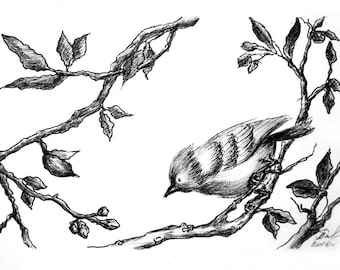 Bird on a branch, original painting, Author's graphics, ink drawing, drawing birds