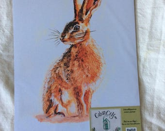 A4 print of original watercolour painting , sitting hare.