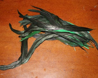 tail feathers of cos, dyed Green