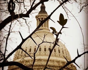 US Capitol Dome with thorns Washington DC