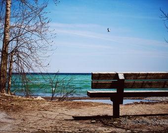Early Spring at the Beach, ShotsBySrsan