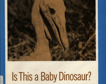 Is This a Baby Dinosaur? And other science picture-puzzles - Millicent E. Selsam - 1971 - Vintage Kids Book