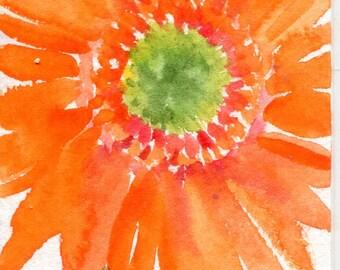 ACEO Orange Gerber watercolor painting, original art card