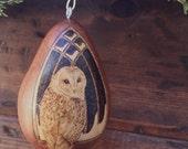 Winter Barn Owl Ornament egg gourd