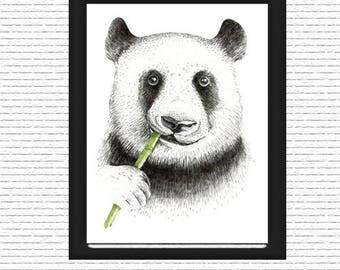 Mr. Panda with Bamboo Wall Art, Print, Digital Art