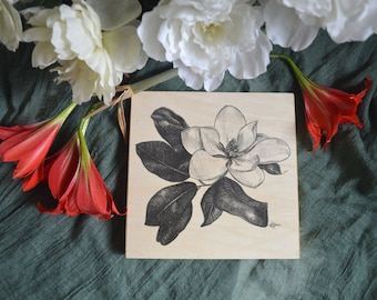 Magnolia Tree Blossom 8x8 inch Wood Print on cradled wood panel