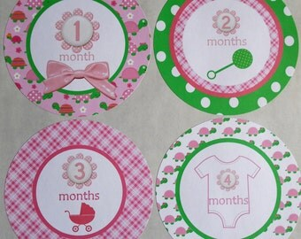 BABY GIRL PINK-Monthly Bodysuit Stickers-set of 12 Plus 1st. Birthday