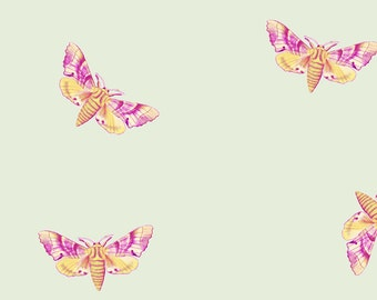 Pink Moth Fabric - Moth Yellow Magenta On Pale Green By Thistleandfox - Woodland Nursery Decor Cotton Fabric By The Yard With Spoonflower