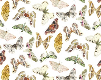Vintage Moth Fabric - Moths On White By Jellymania - Moth Butterfly Insect Vintage Cotton Fabric By The Yard With Spoonflower