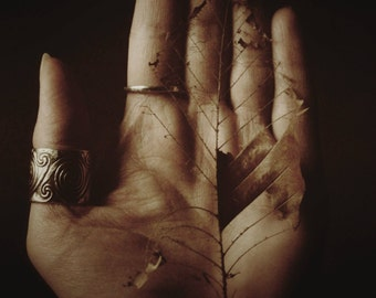 """Rustic Still Life Photography, Visual Art, Hand, Leaf, Bohemian, Pagan, Woodland, Surreal, Choice of Color, 6x9 or 8x12. """"Beheld""""."""
