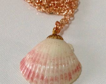 SALE  Pink and white scallop seashell on a rose gold chain necklace - Rose gold, gold and Scallop Shell Charm necklace / Shell necklace