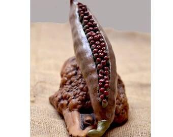 Ceramic Seed Pod.  Nature Inspired  Woodland  Organic Form. Ceramic Sculpture. Ceramic Art. Hand Built Ceramics. Mixed Media.