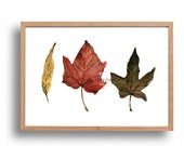 Holiday sale Indian Summer leaves art Print, autumn leaves watercolor, watercolor print, brown, rust, mustard, Still life art, fall leaves a