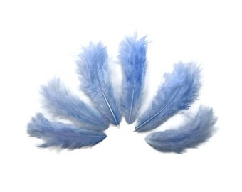 Mini Feathers, 1 Dozen - Solid Light Blue Rooster Chickabou Fluff Feathers : 833