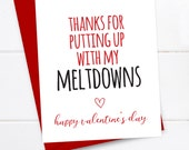 Funny Valentine's Day Card - Valentine's Day Card - Valentines - Quirky Snarky Greeting Card - Thanks for putting up with my meltdowns