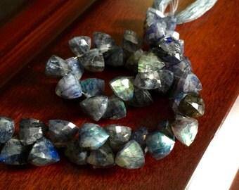 Blue Flash Spectrolite Labradorite Trillion Briolettes (No. 1548)