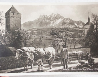 Antique Photo Postcard from Lucerne, Switzerland, Featuring a Farmer and his Cow Cart, The Musegg Wall and Mount Pilatus