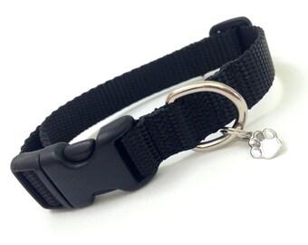Small Little black Dog Collar