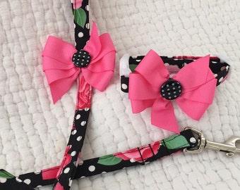 Dog Set Leash &  Collar Custom Sizes