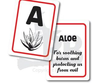 ABC Herbs Flash Cards