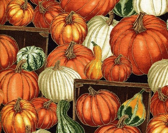 Autumn Bounty Pumpkins & Gourds - Timeless Treasures - 1 yard - More Available - BTY