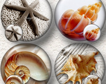 "Seashell Coasters Set 3.5"" in Size with or without matching Set of 4 Wine Charms 1.5"" Buy 3 Sets Get 1 Full Set Free  012C"