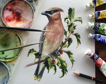 Cedar Waxwing - Original Watercolour