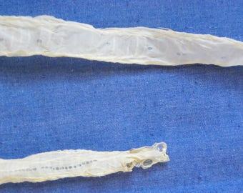 "Cruelty Free No. 101 24"" Inch Scaleless Cornsnake (Corn Snake) Colubrid Skin Shed."