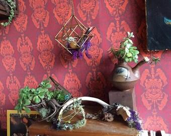 Succulent Tea pot
