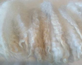 Wensleydale Coopworth Cross Wool Locks / Santa Beard / Needle Craft / Washed Wool / Doll Hair / Roving / Yarn / Spinning / Roving (3026)