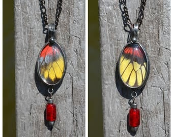 Real Butterfly Wing Necklace, Butterflies, Butterfly Jewelry, Artisan Necklace, Handmade Two Sided Butterfly Necklace, Organic Jewelry (2739