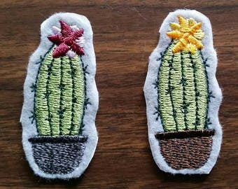 Cacti Patch
