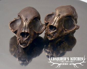 Dark Chocolate Cat skull