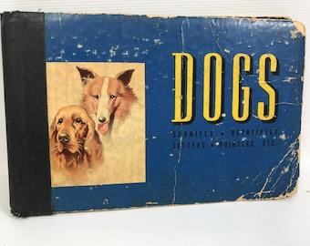 Small blue dog book robert briggs logan