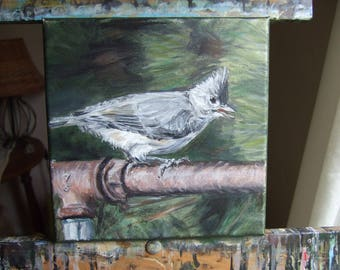 Tufted Titmouse on Pipe 8 x 8 original painting 8x8