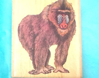 Rubber Stampede Mandrill rubber stamp primate old world monkey tropical rainforest animal baboon lookalike vintage stamps wood mounted 445-E