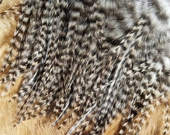Feathers - Natural Striped Grizzly Saddles - Lot of 50