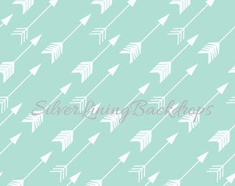 NEW Item 7ft x 7ft Photography Backdrop / Trendy ARROWS / AQUA / Teal / Pointed North