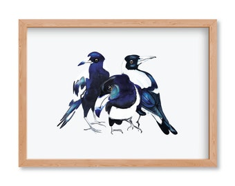 Magpies Three - Limited Edition Print