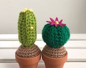 Mini Crocheted Cacti (set of two)