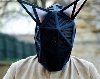 Electro Mask / Costume