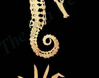 """The Seahorse Skeleton art print 12"""" x 16"""""""
