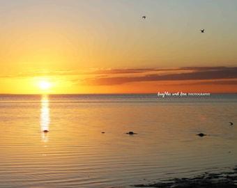 Yellow Sunset Beach Photo, Low Tide Ocean Photography, Sunset Sea Buoys Picture, Tropical Coastal House Decor, Nautical Home Decor Wall Art