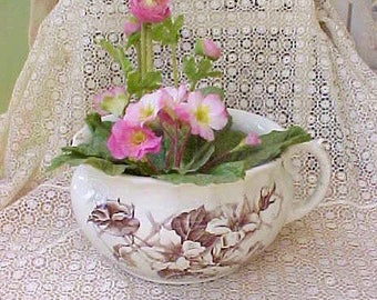 Beautiful Victorian English Brown and White Transferware Chamber Pot